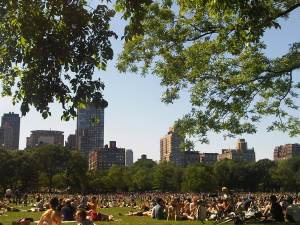 Update: Today in Central Park. Perfect Day!